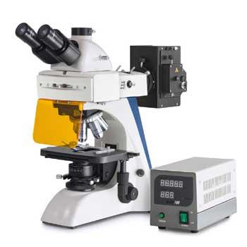 Svetlobni mikroskop